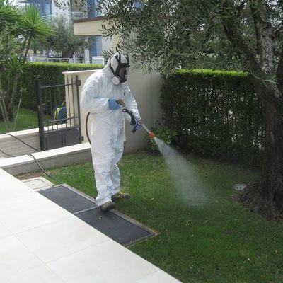Trattamento anti-zanzare