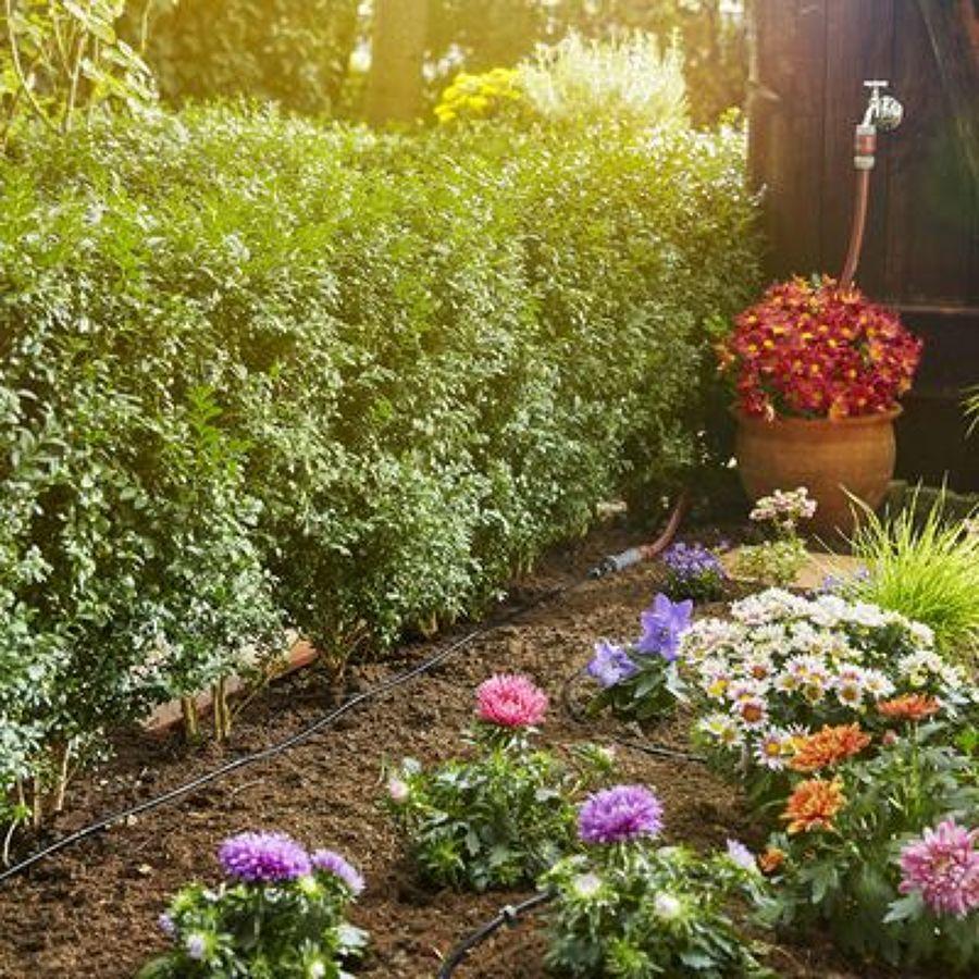 Preventivo impianto irrigazione giardino online habitissimo for Sistemi di irrigazione giardino