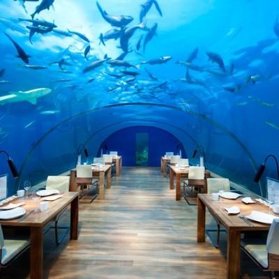 Ithaa Undersea Restaurant – Maldive