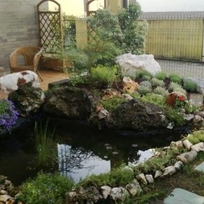 laghetto da giardino usato