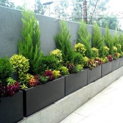 Aiuole per colorare il giardino