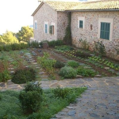 Coltivare l'orto in giardino