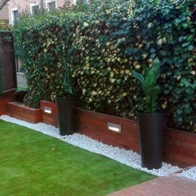Dividere un giardino con le siepi