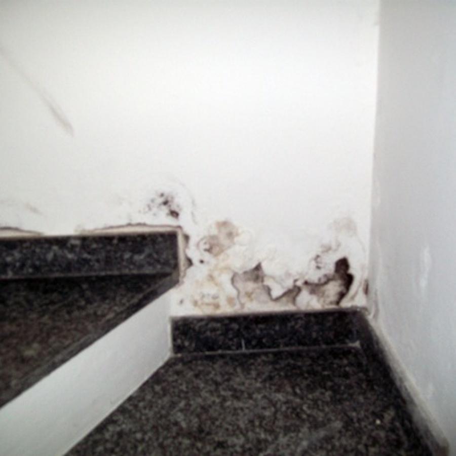 Preventivi per eliminare la muffa sui muri habitissimo - Muffa sui muri esterni ...