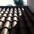 Cartongesso, Giardini, Realizzazione Piscine Scavi
