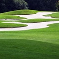 Anche campi da golf
