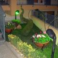 Angolo giardino con pianta a spirale