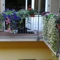 balcone fiorito con impianto di microirrigazione