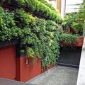 Lo scivolo del garage porta in giardino