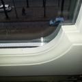 dettaglio finestra a fine lavoro con il vetro camera inserito