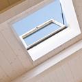 Finestra per tetti Roto Linea Vita