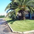 giardino aziendale