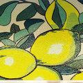 Mosaico Cucina Limoni