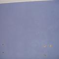 parete blu con brillantini