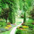 Piccolo giardinaggio