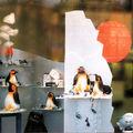 pinguini e ghiaccio