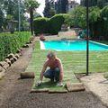 posa del tappeto erboso