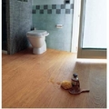 Posa Parquet in bagno