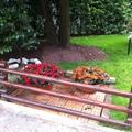 realizzazione giardino milano