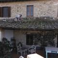 Riparazione e pulizia  tettoie