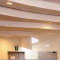 Scuola S. Carlo - particolare soffitto