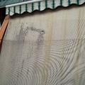Sostituzione teli in vinitex Torino Chieri www.mftendedasoletorino.it