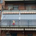 Tenda veranda doppio rullo estiva e invernale www.mftendedasoletorino.it M.F. Tende e tendaggi