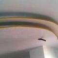 velette curve