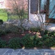 Gitienne Giardini