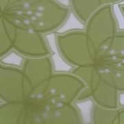 Color Restyling Di Coco Leonardo E C.s.a.s.