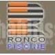 Ronco Piscine
