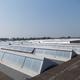 Bonaveri - Ferrara - Intervento pellicole solari e Cool Roof, pittura termo-riflettente