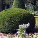 giardino in varese