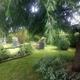 giardino ornamentale