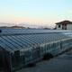 Impianto fotovoltaico su serra