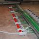 installazione prese elettriche