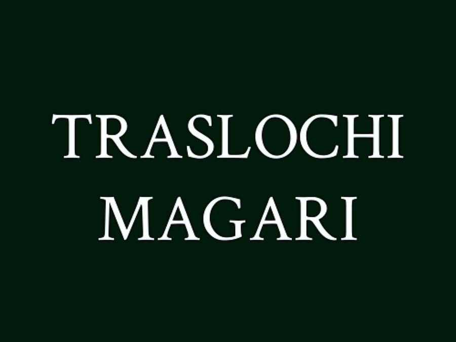 Foto magazzini custodia mobili traslochi nazionali for Magazzini mobili