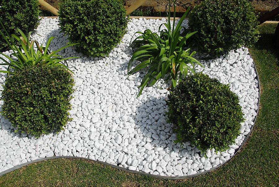 Foto aiuola ciottoli e bosso di garden service cagliari for Cespugli fioriti per giardino