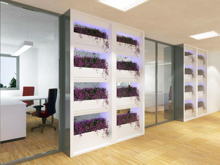 Giardino verticale per l'ufficio