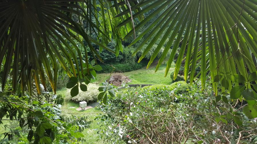 giardino in collina