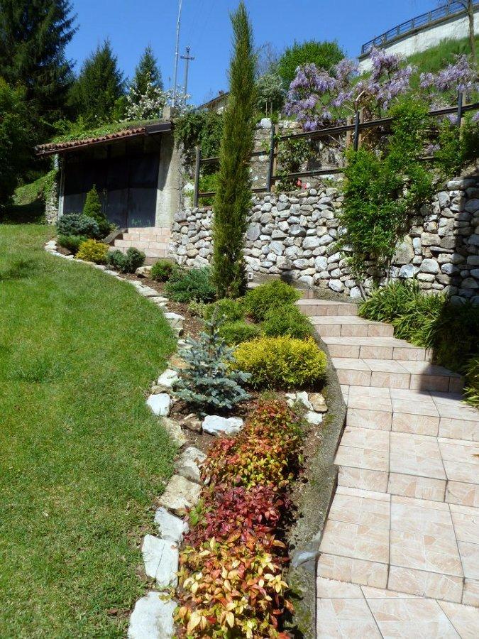 Foto aiuola con conifere di andrea morlotti 79459 for Foto giardini e aiuole