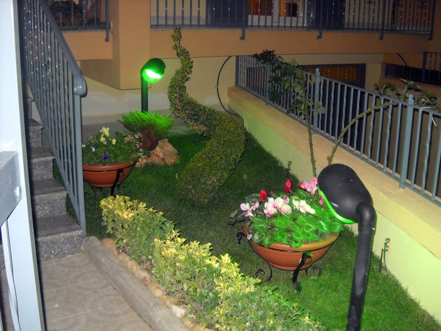 foto angolo giardino con pianta a spirale di giquattro