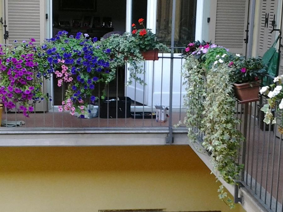 Foto: Balcone Fiorito con Impianto di Microirrigazione di L\'arte Del ...