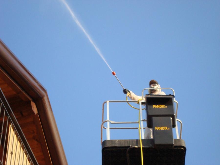 Foto disinfestazioni vespe da tegole del tetto no api for Tegole del tetto della casetta