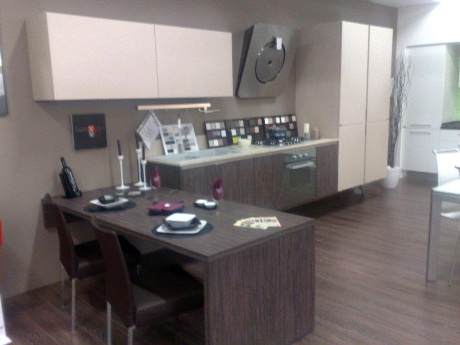 Foto gatto cucine vision di casa idea design 55283 for Gatto cucine
