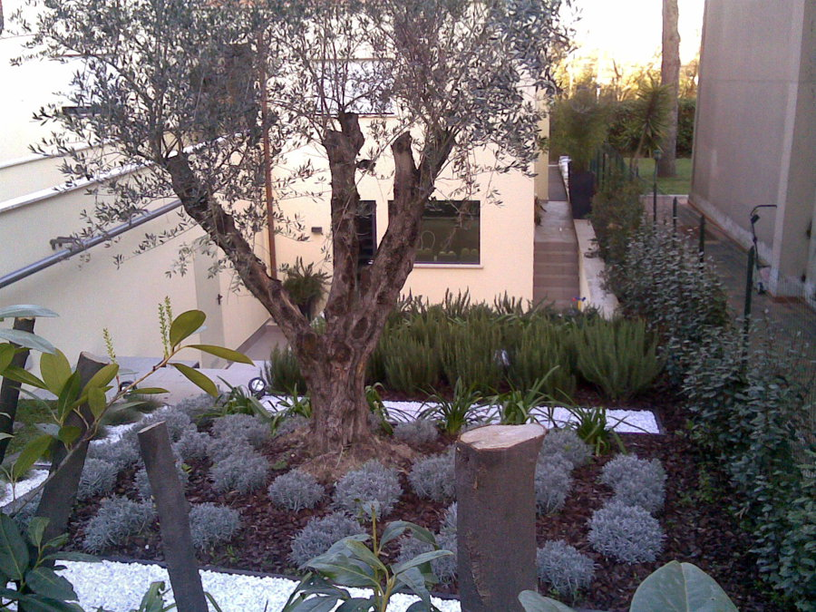 Foto giardino a gradoni di impresa edile geom gianfranco - Gradoni giardino ...