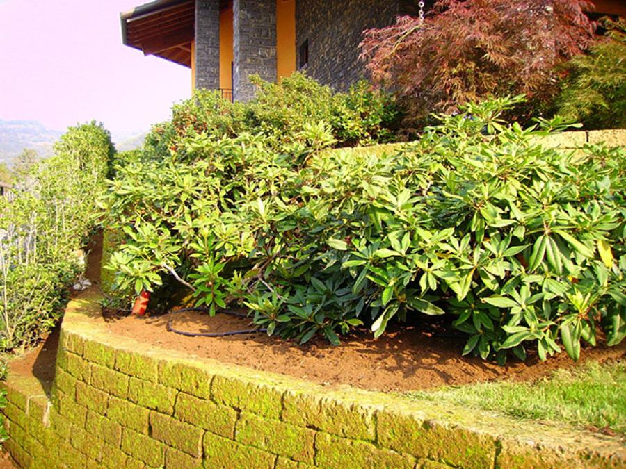Foto giardino con muretti in tufo sant 39 omobono terme for Muretti in tufo per aiuole