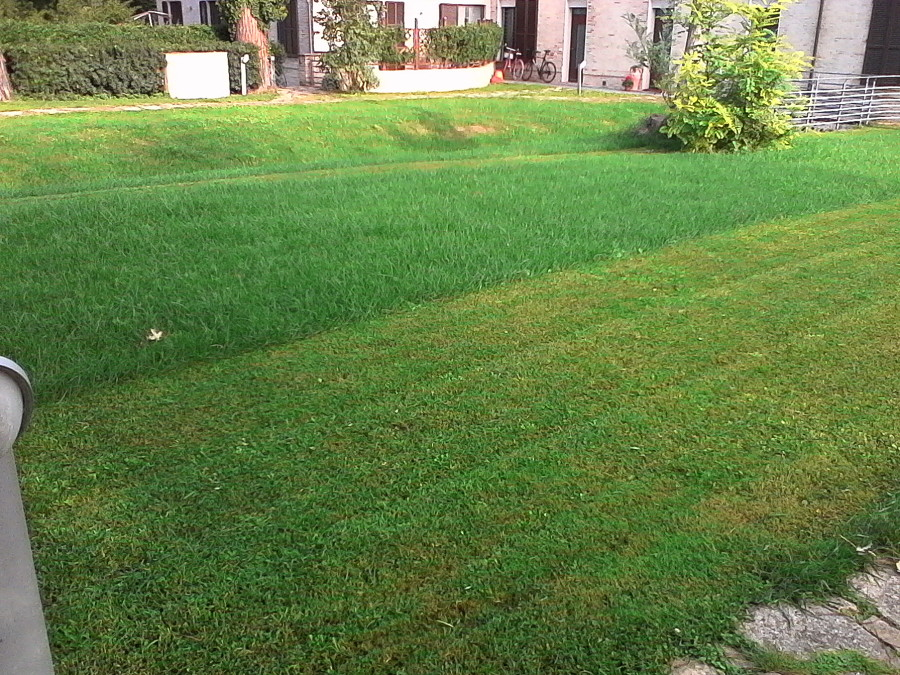 Foto manutenzione giardini di p r s for Manutenzione giardini