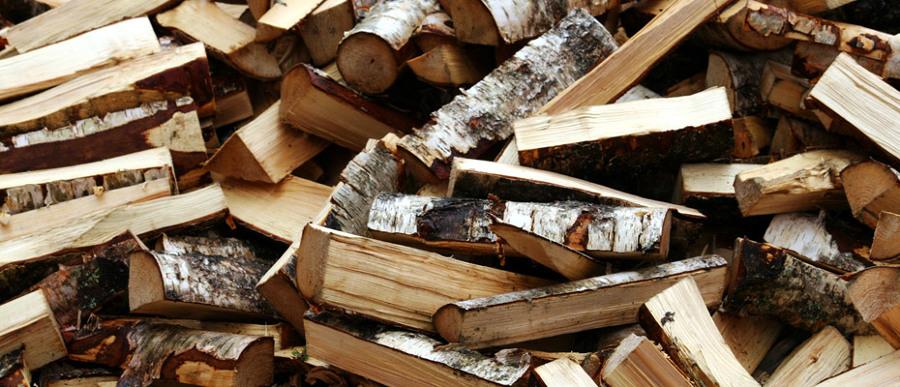 Foto legna da ardere de greentek 51115 habitissimo for Legna da ardere brianza