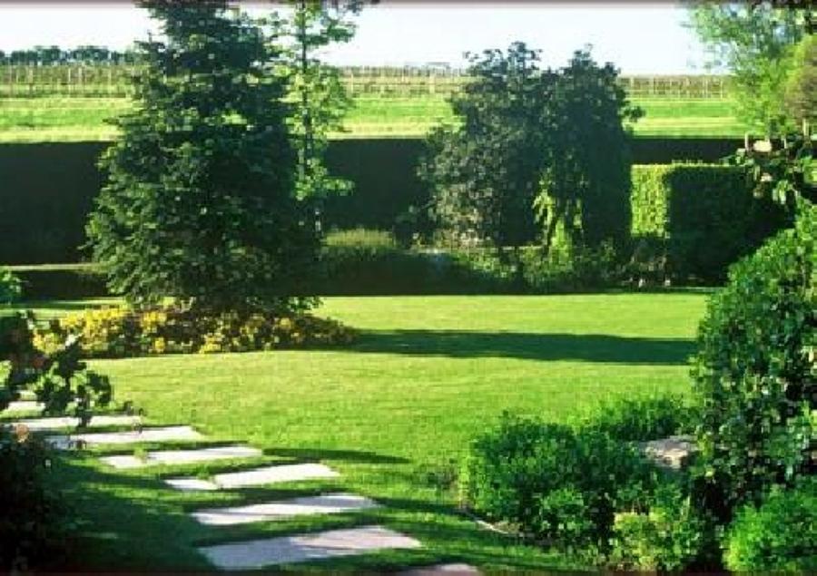 Foto: Manutenzione Giardini e Parchi a Roma e Provincia De Alberomania #53626 - Habitissimo
